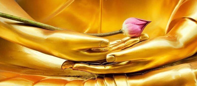 Shamatha Meditation Online Seminar