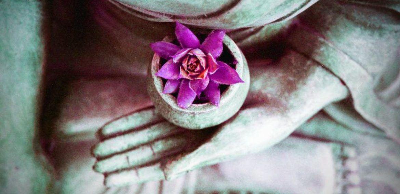 Shamatha Meditation to Calm Your Mind